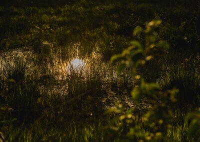 Vijf Elementen Ritueel – Jelle Hainje en Niravo den Heijer